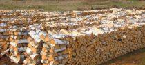 How to buy wood on Prozorro